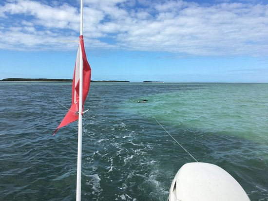 Sugarloaf Key, FL: Spectacular colors. Great rental boat. Easy enough to reserve, pick up and return.  Price was re