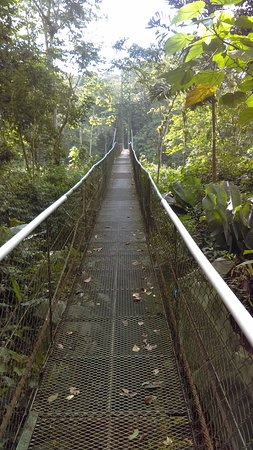 Sarapiqui, Costa Rica : bridge across the river