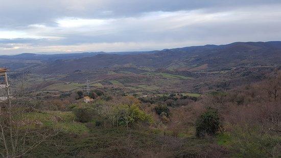 톨파 사진