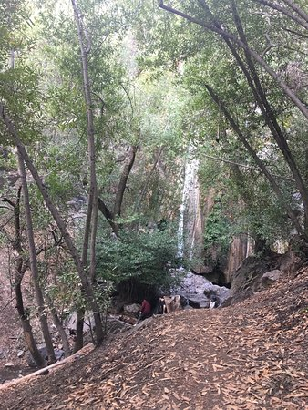 Ojai, CA: Rose Valley Falls Trail
