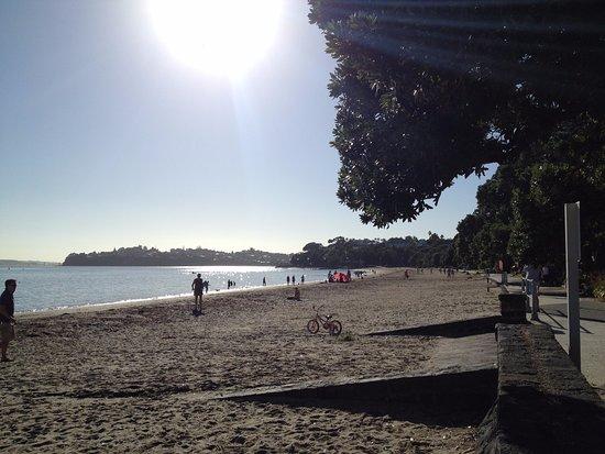 Remuera, นิวซีแลนด์: Kohimarmara Beach (inner city beach)