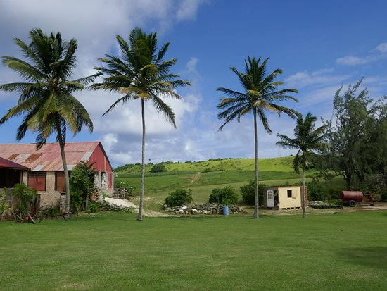 Saint Peter Parish, Barbados: Just outside the rum distillery
