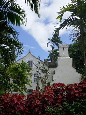 Saint Peter Parish, Barbados: Side gardens