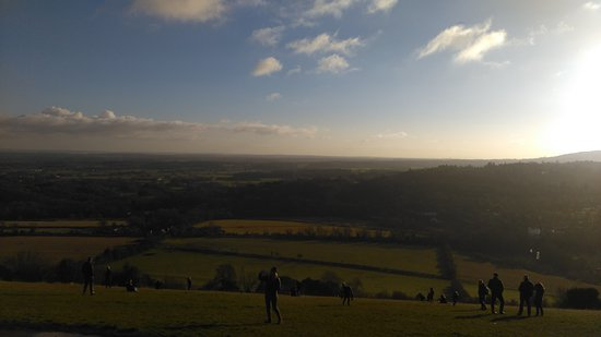 Box Hill Photo