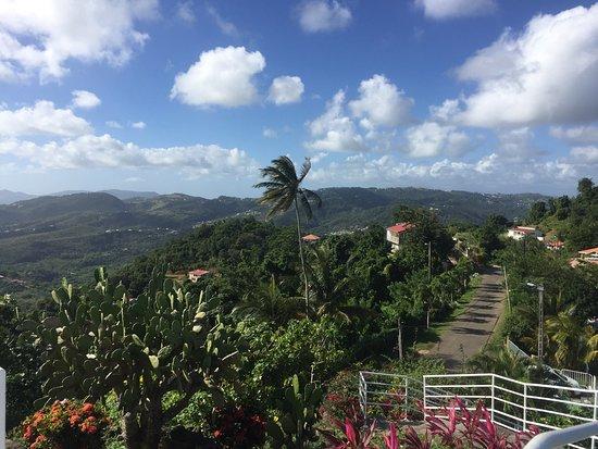Le Marin, Martinique: photo3.jpg