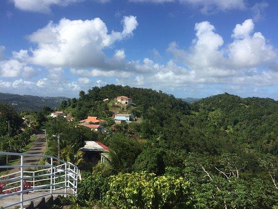Le Marin, Martinique: photo4.jpg