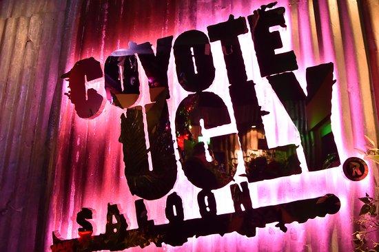 コヨーテアグリーサルーン, Coyote Ugly Saloon Roppongi