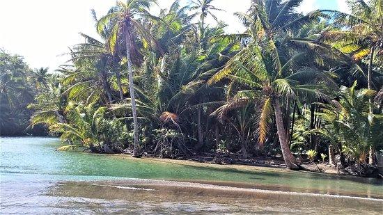 Calibishie, Dominica: River below property