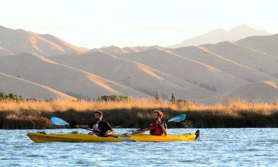 Blenheim, Neuseeland: Wither hills