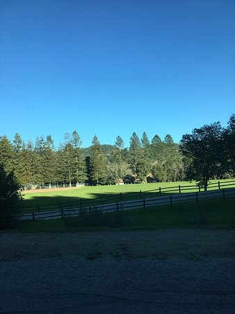 Boulder Creek, CA: photo9.jpg