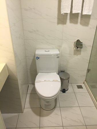 ユナイトホテル(統一大飯店), 残念ながらウォッシュレットは付いていません
