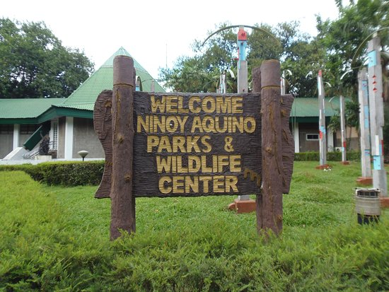 ninoy aquino parks and wildlife center Explore an array of ninoy aquino parks and wildlife center, quezon city  vacation rentals, including apartments, condos & more bookable online choose  from.