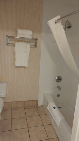 BEST WESTERN PLUS Placerville Inn: Bath/shower & potty
