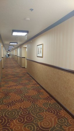 Placerville, CA: Long hallway toward front office
