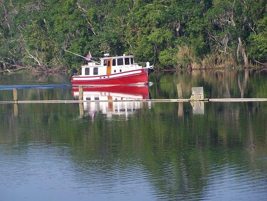 Deltona, FL: Дэльтона. Можно прокатиться на небольшом кораблике по реке John's River.