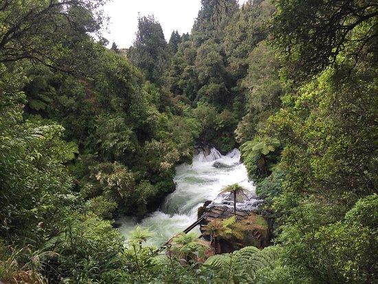 Rotorua Rafting: photo2.jpg