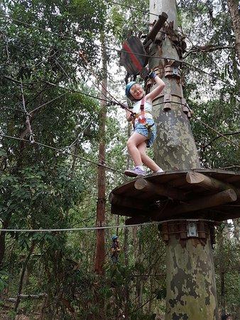 TreeTops: IMG-20170115-WA0008_large.jpg