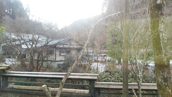 Ryokan Nishimura: DSC_7425_large.jpg
