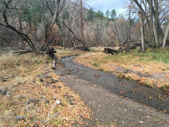 Los Álamos, Nuevo Mexico: The creek that runs through the canyon.