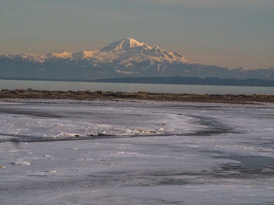 Delta, Canada: Mt. Baker and icy inlet