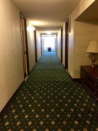 스프링스 호텔 앤드 스파 이미지
