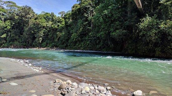 La Virgen, Costa Rica: Vista del Rio y playon desde la caminata guiada