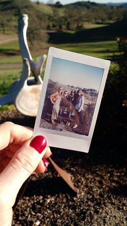 Paso Robles, CA: Wine fun with new friends