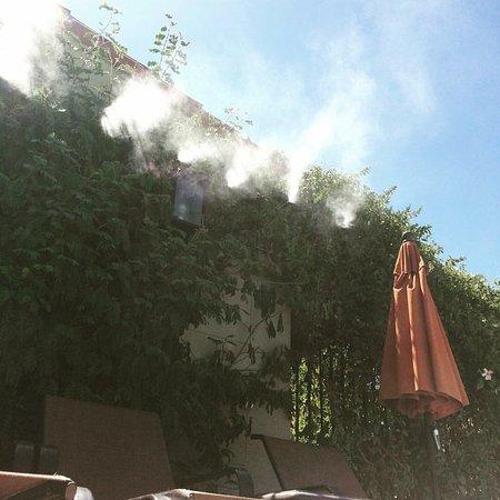 We love Los Arboles hotel