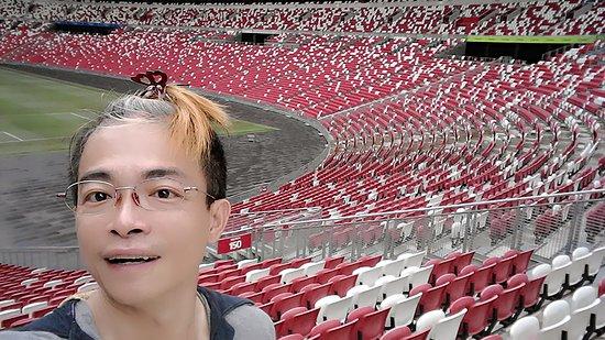 National Stadium: Singapore Sports Hub#3