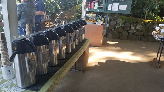 Kealakekua, Hawái: Very large selection of free coffee tastings