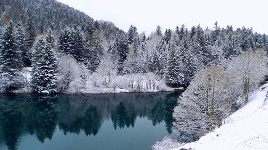 Candanchu, Espagne : Bosque de Sansanet y Lago a menos de 1 km del albergue