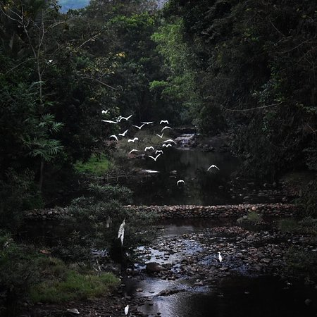 """Malom - """"The coorg of Kerala"""""""