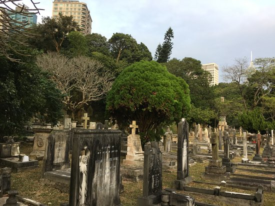 Japanese Cemetery Picture