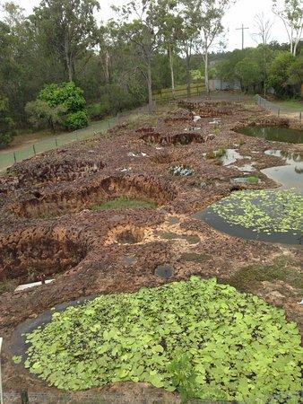 Bundaberg, Australie : Craters