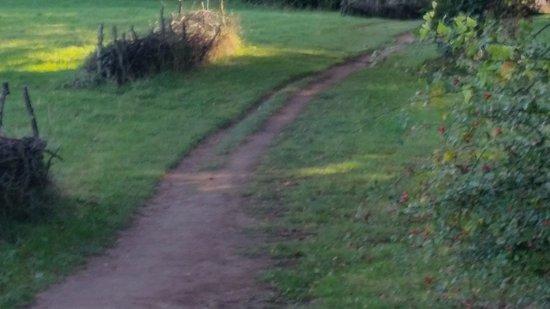 Wiltshire, UK: Main Picnic area