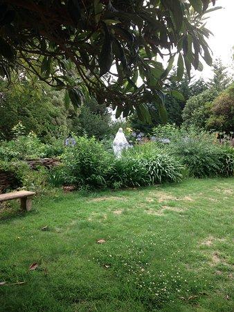 Leura, Australien: Back Garden