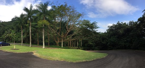 Senator Fong's Plantation and Gardens : photo0.jpg
