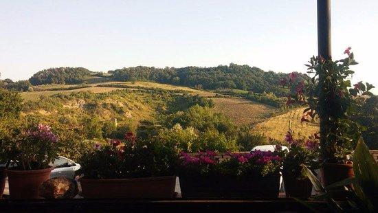 Casole d'Elsa, Italy: La vue de la terrasse