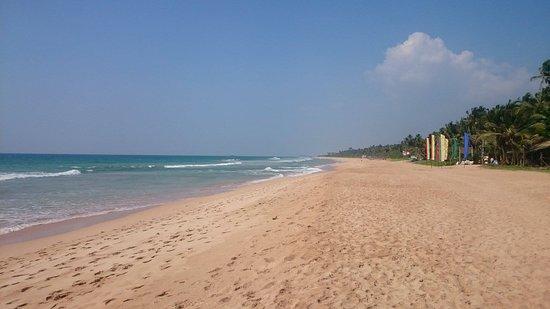 The Chalet Bentota: beach