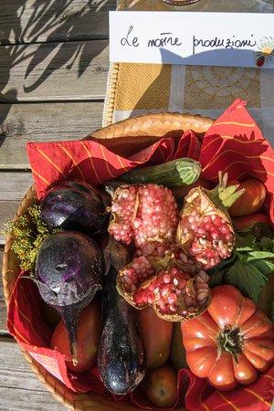 Valfabbrica, Itália: il nostro orto