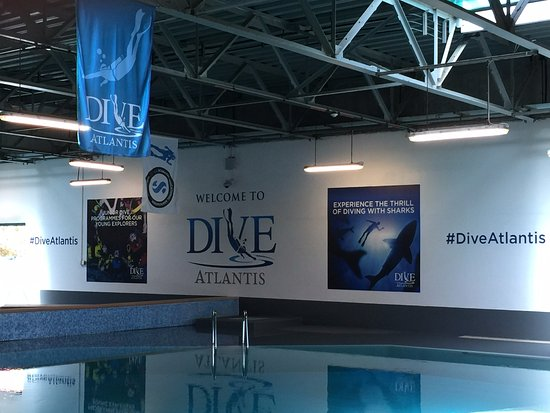 ‪Atlantis Dive Centre‬