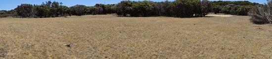 Hanson Bay, Australien: Vista