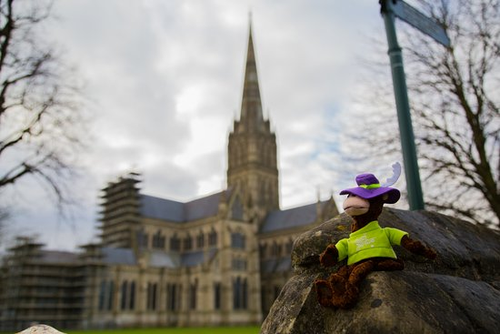 Drunken Monkey visits Salisbury Cathedral (find him on FB)
