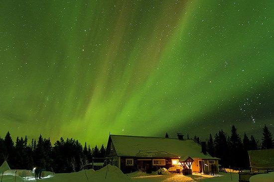 Norrbotten County, Sweden: Polarlicht in der Silvesternacht 2016/17