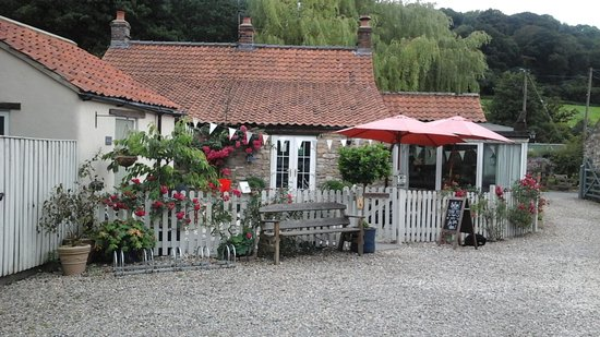 Thornton-Le-Dale, UK: Tea Cosy Tea Room