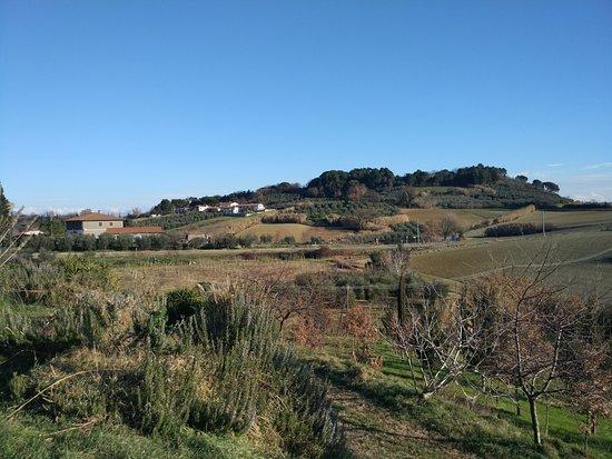 Lorenzana 사진