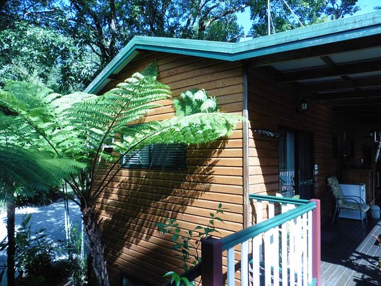 Red Mill House in Daintree: View of accomodation.