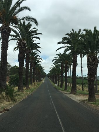 Bums On Seats Day Tours: Beautiful Barossa