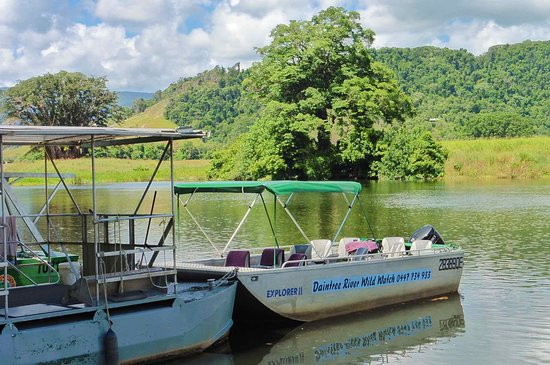 Daintree, Αυστραλία: This is the boat used on the trip. The canopy folds away.