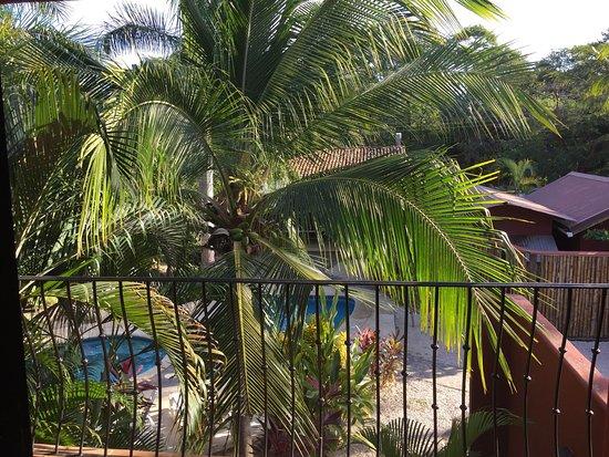 Playa Grande, Costa Rica: photo0.jpg